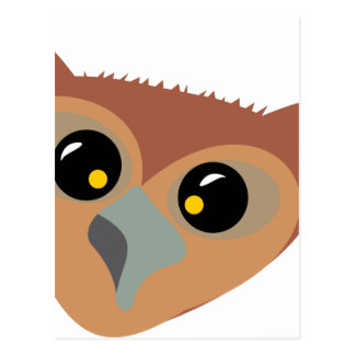 Squint-eyed Owl Postcard