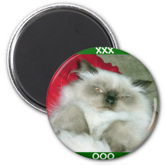 Squinty Himmy 2 Inch Round Magnet