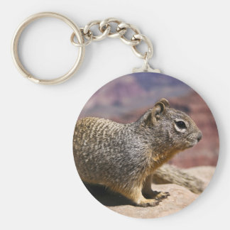 Squirel at the Grand Canyon Keychains