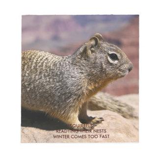 Squirel at the Grand Canyon Memo Pads