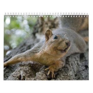 squirel calendar