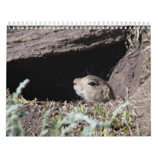 squirel in hole calendar