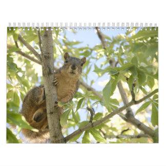 squirel in tree calendar