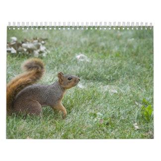 squirel walking calendar