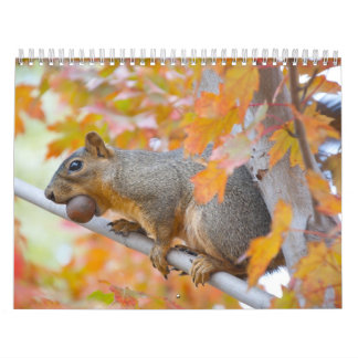 squirel with nut calendar