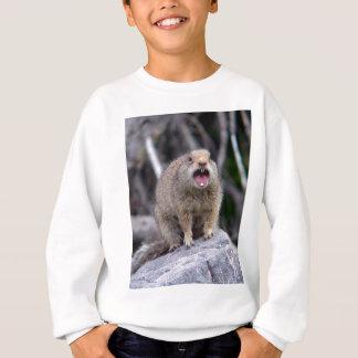 squirrel2 sweatshirt