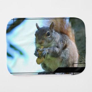 squirrel-13.jpg burp cloths