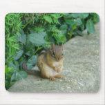 Squirrel_1 Mousepad