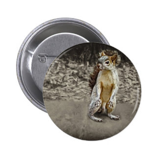 Squirrel 1 Painted Pinback Button