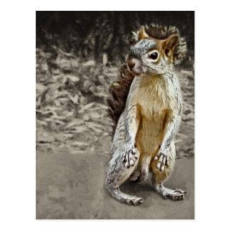 Squirrel 1 Painted Postcard