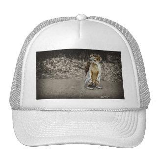 Squirrel 1 Painted Trucker Hat
