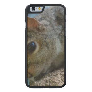 squirrel-25.jpg carved® maple iPhone 6 slim case