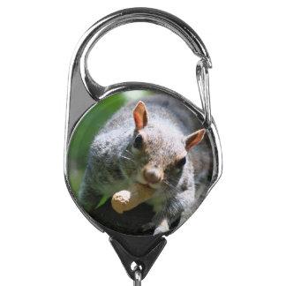 squirrel-26.jpg badge holder