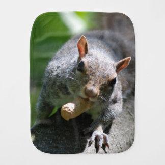 squirrel-26.jpg burp cloths
