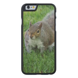 squirrel-33.jpg carved® maple iPhone 6 case