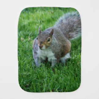 squirrel-33.jpg baby burp cloths