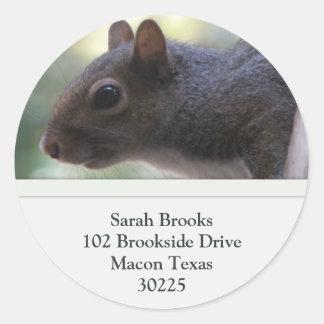 Squirrel Address Labels Round Sticker