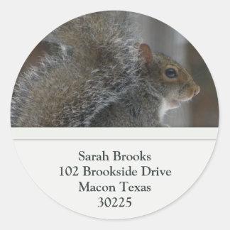Squirrel Address Labels Round Stickers