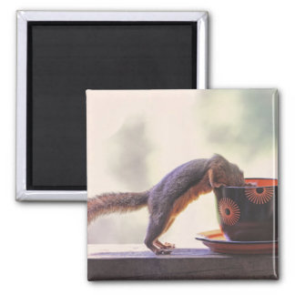 Squirrel and Coffee Cup Fridge Magnets