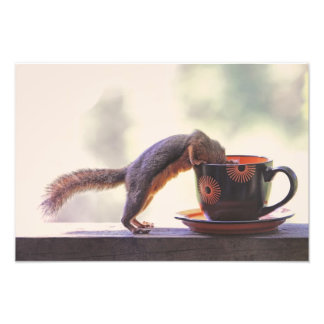 Squirrel and Coffee Cup Photo Print