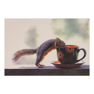 Squirrel and Coffee Cup Poster