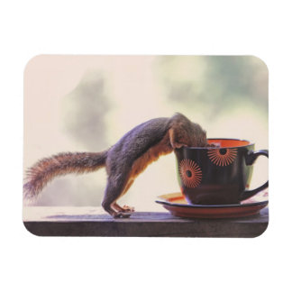 Squirrel and Coffee Cup Flexible Magnets