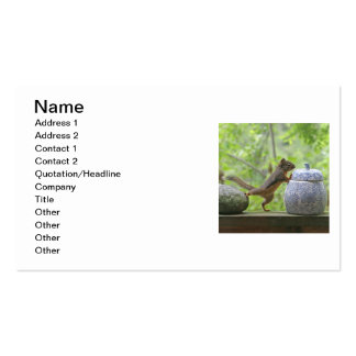 Squirrel and Cookie Jar Business Card
