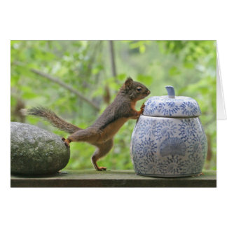 Squirrel and Cookie Jar Card