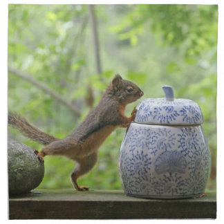 Squirrel and Cookie Jar Cloth Napkin