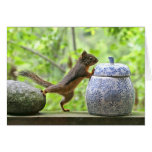 Squirrel and Cookie Jar Greeting Cards