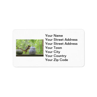 Squirrel and Cookie Jar Label
