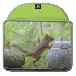 Squirrel and Cookie Jar MacBook Pro Sleeve