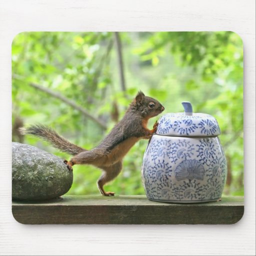 Squirrel and Cookie Jar Mousepad