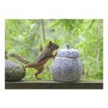 Squirrel and Cookie Jar Personalized Invitations