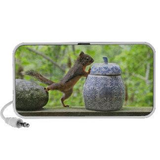 Squirrel and Cookie Jar Mini Speakers