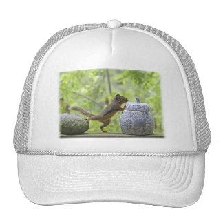 Squirrel and Cookie Jar Trucker Hat