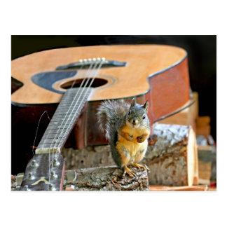 Squirrel and Guitar Postcard