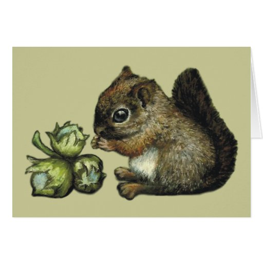 Squirrel and hazelnuts greeting cards