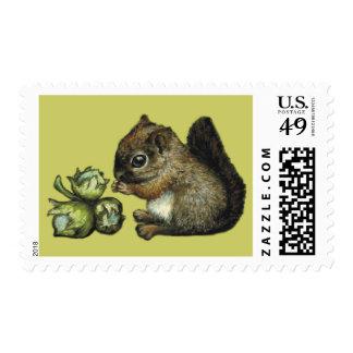 Squirrel and hazelnuts postage