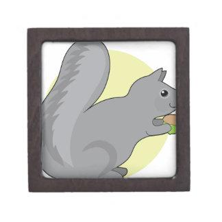 Squirrel and Nut Keepsake Box