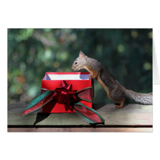 Squirrel and Open Present Card