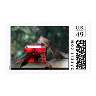Squirrel and Open Present Postage