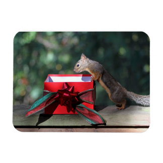 Squirrel and Open Present Flexible Magnet