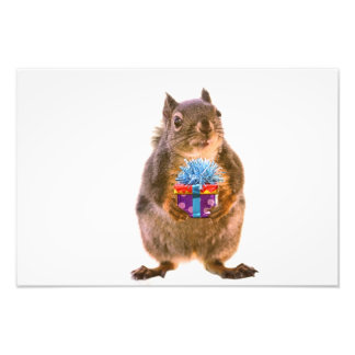 Squirrel and Present Photo Print