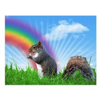 Squirrel and Rainbow Sky Postcard