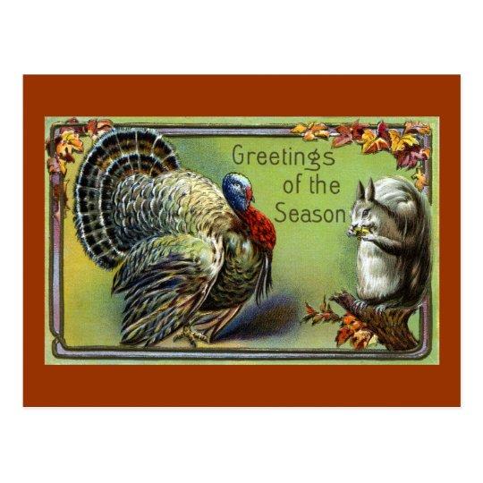 Squirrel and Turkey Vintage Thanksgiving Postcard