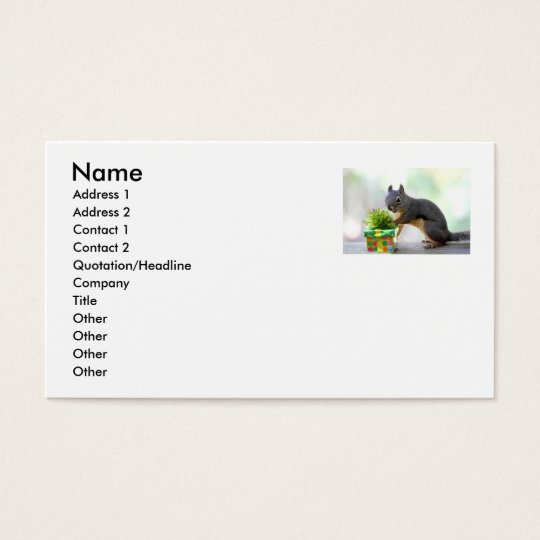 Squirrel and Wrapped Present Business Card