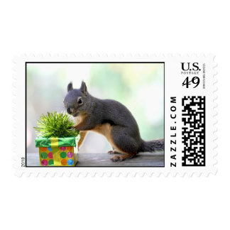 Squirrel and Wrapped Present Postage