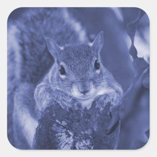 squirrel animal on log hanging out bluish square sticker