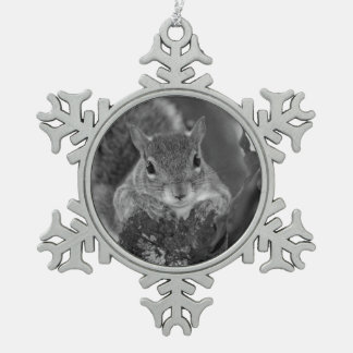 squirrel animal on log hanging out bw ornament